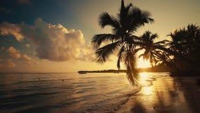 Relaxation on tropical island beach. Carribean sea sunrise, Punta Cana, Dominican Republic.  stock video