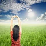 Relaxe a mulher em campos do arroz e no céu verdes de Sun Imagem de Stock