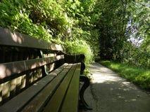 Relaxe na floresta Imagens de Stock Royalty Free
