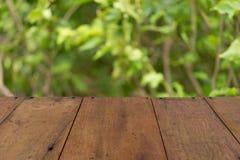 Relaxe na floresta fotografia de stock