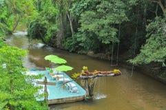 Relaxe o tempo no rio Imagens de Stock