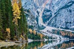 Relaxe perto de Lago di Braies imagens de stock royalty free