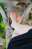 Relaxed. Image of a woman's legs against a palm tree trunk Stock Photography