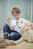 Relaxed boy sitting with his dog on floor Stock Photos