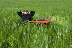 Relaxed Businessman. Businessman relaxes in field, with all his cares and troubles taken care of. No stress, no troubles and no worries about insurance, profit royalty free stock images