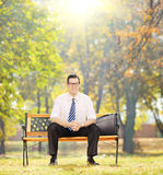 Relaxed businessman sitting on bench in a park on sunny day Stock Image