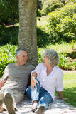 Relaxed couple sitting together against tree at park Stock Photo