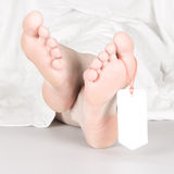 Relaxed dead body with toe tag. Under a white sheet, relaxed Stock Photography
