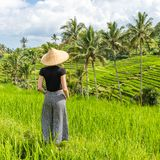 Relaxed fashionable caucasian female tourist wearing small backpack and traditional asian paddy hat looking at beautiful royalty free stock photography