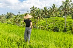 Relaxed fashionable caucasian female tourist wearing small backpack and traditional asian paddy hat looking at beautiful stock photo