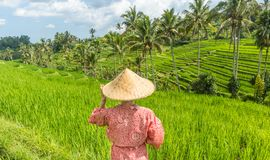 Relaxed fashionable caucasian woman wearing red asian style kimono and traditional asian paddy hat looking at beautiful royalty free stock photo