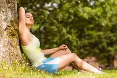 Relaxed fit brunette sitting against a tree Royalty Free Stock Photography