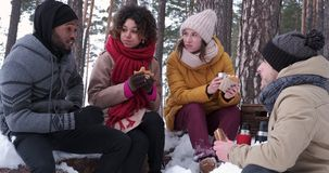 Relaxed friends picnicking in snowy forest stock video footage