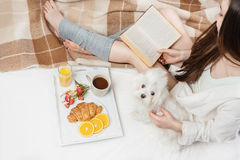 Relaxed happy home time with pet. Woman sitting on the bed reading book having breakfast embraces small dog lapdog. top view Royalty Free Stock Photo