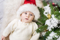 Relaxed little boy lying next to the pine Royalty Free Stock Photos