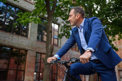 Relaxed man cycling in city. Cheerful businessman is riding bicycle to work. He is looking around with pleasure and relaxing Royalty Free Stock Photos