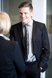 Relaxed managers communicating cheerfully Stock Image