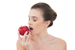 Relaxed natural brown haired model biting an apple Stock Images