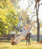 Relaxed pensioner sitting on a bench in park Royalty Free Stock Images
