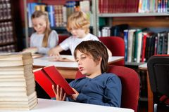 Relaxed Schoolboy Reading Book In Library Stock Photography