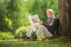 Relaxed senior gentleman reading a newspaper. Relaxed senior gentleman sitting by a tree in a park and reading a newspaper on a beautiful sunny day Royalty Free Stock Photos