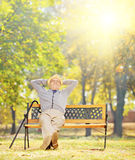 Relaxed senior gentleman sitting on bench in park on a sunny day. Relaxed senior gentleman sitting on a wooden bench in a park on a sunny day, shot with a tilt Stock Image