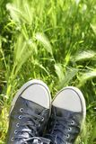 Relaxed silver shoes having rest meadow field Stock Photography