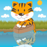 Relaxed Tiger. Cute tiger relaxed on a rock looking at his reflection on water Royalty Free Stock Photos
