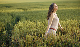 Relaxed woman on the corn field Royalty Free Stock Photos