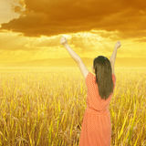 Relaxed woman in rice field with mountain and sunset. Royalty Free Stock Images