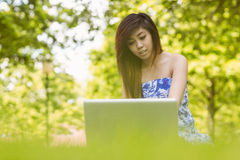 Relaxed woman using laptop in park Royalty Free Stock Image