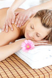 Relaxed young woman having a back massage Royalty Free Stock Photo