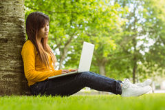 Relaxed young woman using laptop in park Royalty Free Stock Photos