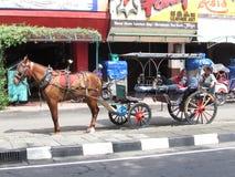 Relaxing Andong driver - Jogyjakarta. Relaxing Andong driver in Jogyakarta Indonesia Stock Photo