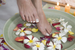 Relaxing aromatherapy spa for feet 6 Stock Image