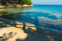 Relaxing beach view. Tree shades and clear water Stock Photos