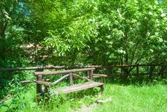 Relaxing bench into the green forest royalty free stock images