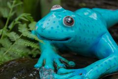 Relaxing blue and garden frog figure Stock Photo