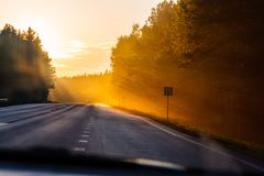 Relaxing car trip along local forest at daybreak royalty free stock photos