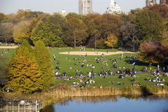 Relaxing in Central Park Royalty Free Stock Image
