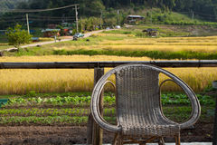 Relaxing chair with yellow rice terraces background. At Chiangmai , Thailand Royalty Free Stock Image