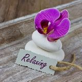 Relaxing coupon. With stones and orchid Royalty Free Stock Image