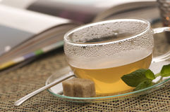 A relaxing cup of tea Royalty Free Stock Photo