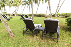Relaxing deck chairs at tropical resort with nobody. Relaxing deck chairs at tropical resort with lush grass with nobody Royalty Free Stock Photography