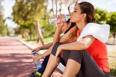 Relaxing and drinking water Stock Image