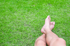 Relaxing on the field Royalty Free Stock Photo