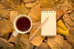 Relaxing in the forrest with coffee. Cup of coffee and notebook on dry leaves vintage color tone Stock Photos