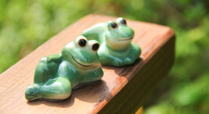 Relaxing Frogs Stock Images