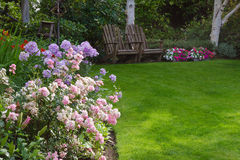 Relaxing Garden. Clusters of pink and white tea roses by a lush green lawn with two rustic chairs waiting for you in the background Stock Photo