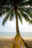 Relaxing in a hammock Royalty Free Stock Photo